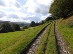 Farm walk to panoramic view