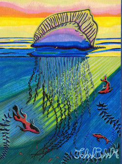 """Jellyfish"" by John Behnke"