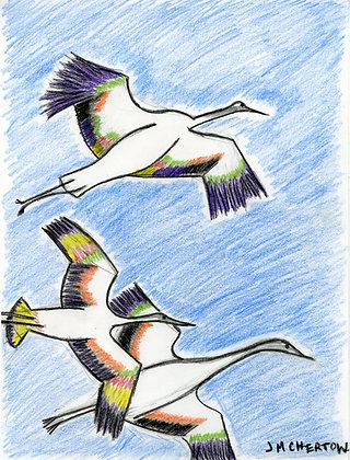 """""""Cranes in Flight"""" by Jennifer Chertow"""