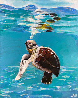 """""""Sea Turtle"""" by Alfred Banks"""