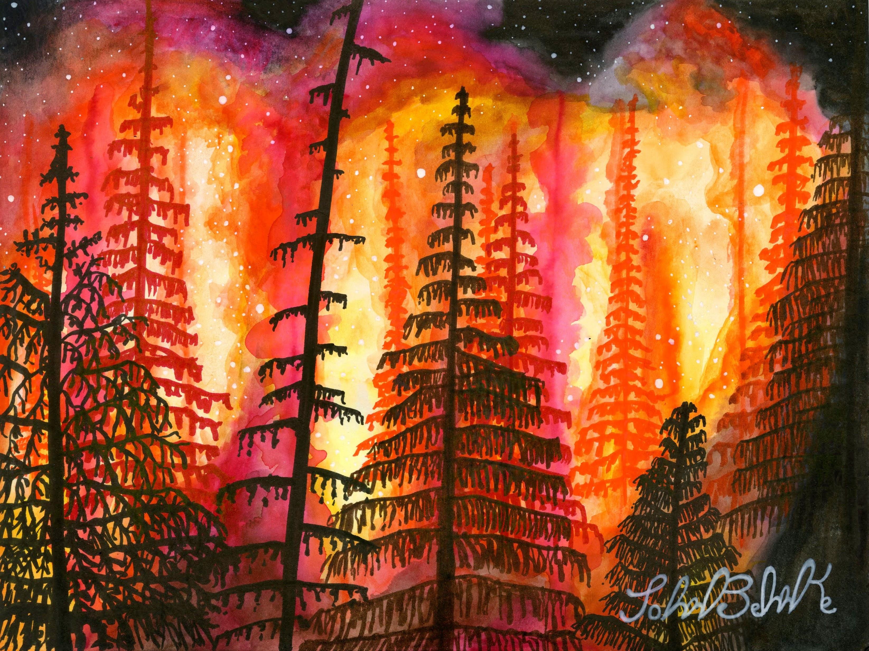 """""""Forest Fire"""" by John Behnke"""