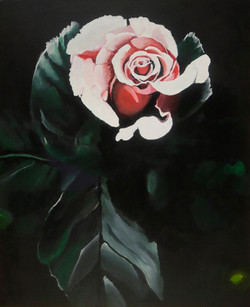 """""""Rose in the Light"""" by Alfred Banks"""