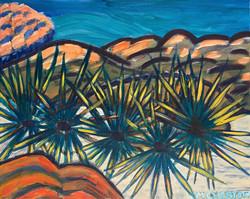 """""""Sea Urchins"""" by Jennifer Chertow"""