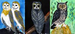 MH_Owl Series