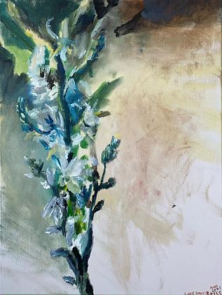 """""""Night Flowers"""" by Luke Shemroske"""