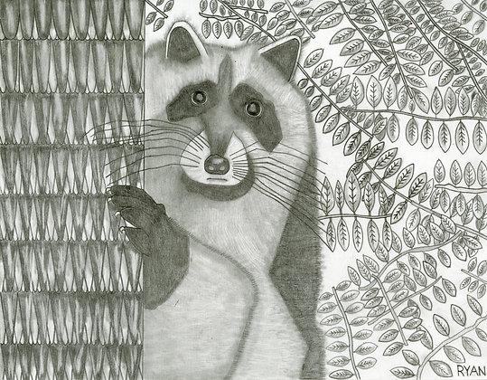"""Raccoon"" by Ryan Tepich"