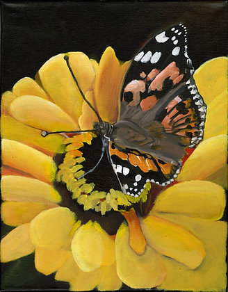 """""""Monarch"""" by Alfred Banks"""