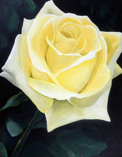 """""""Yellow Rose"""" by Alfred Banks"""