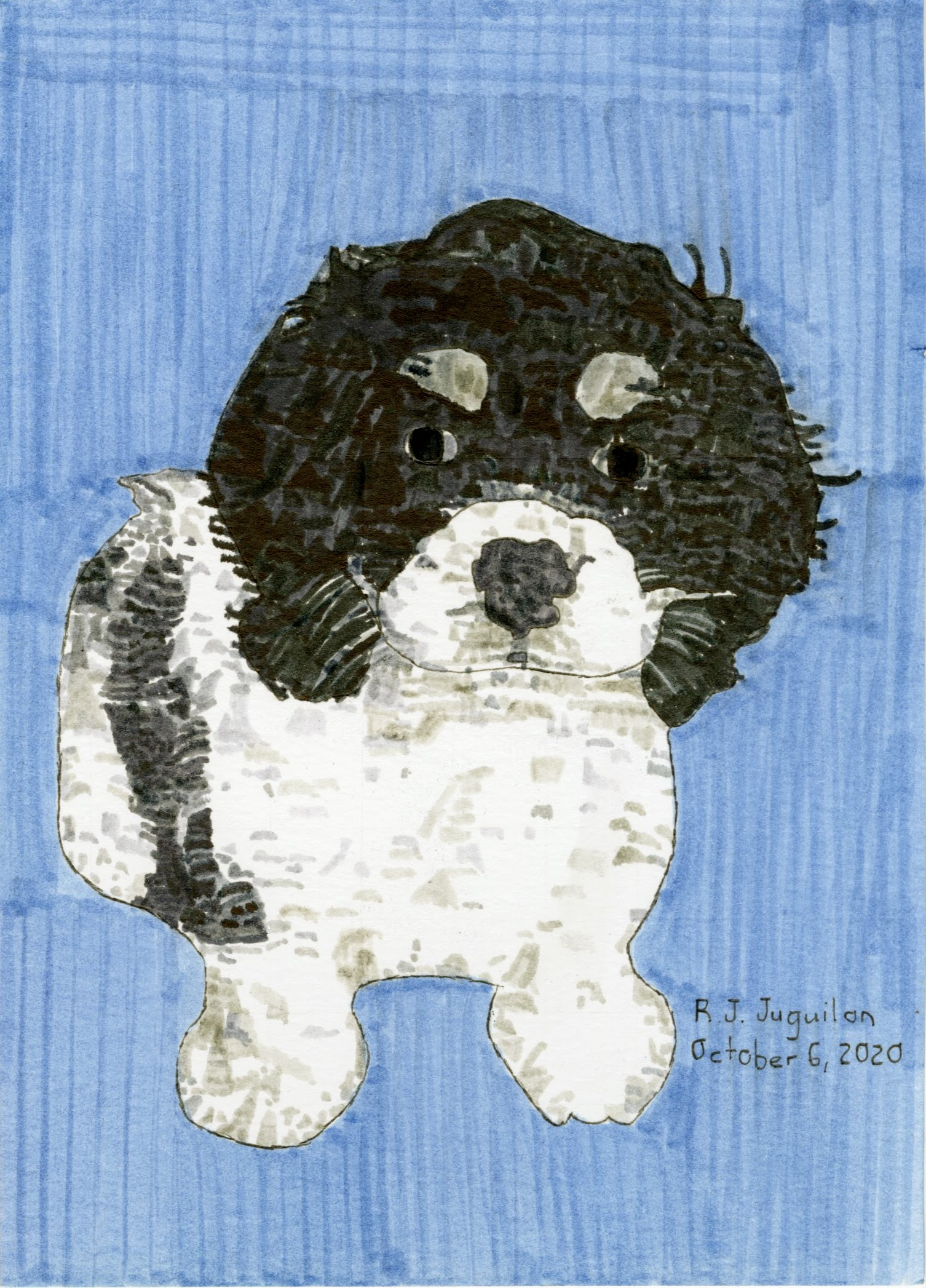 """Cocker Spaniel Puppy"" by RJ Juguilon"