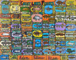 """""""Great Lakes Fishes"""" by Adam Hines"""
