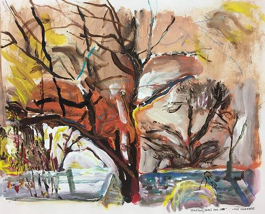 """""""Trees"""" by Luke Shemroske"""