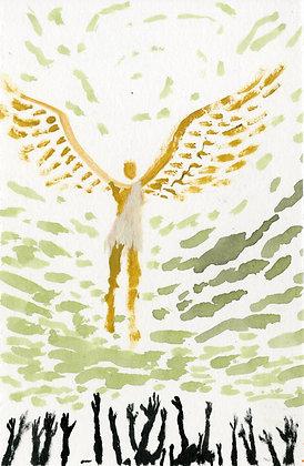 """""""Flying Over You"""" by Luke Shemroske"""