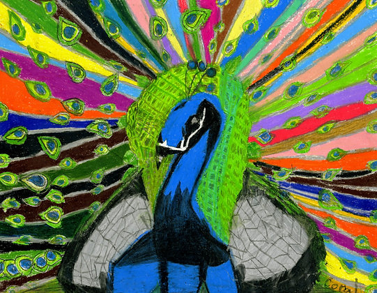 """""""Peacock"""" by Coral Kappel"""