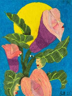 """Lily Ladies"" by Bill Douglas"