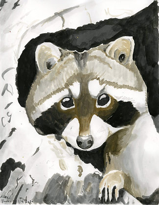 """""""Racoon"""" by Alfred Banks"""