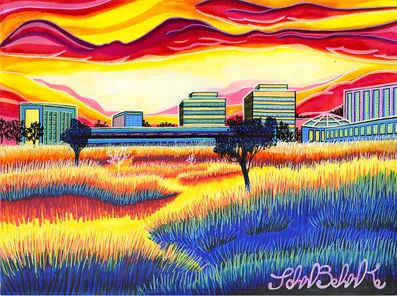"""""""Grassy Field"""" by John Behnke"""