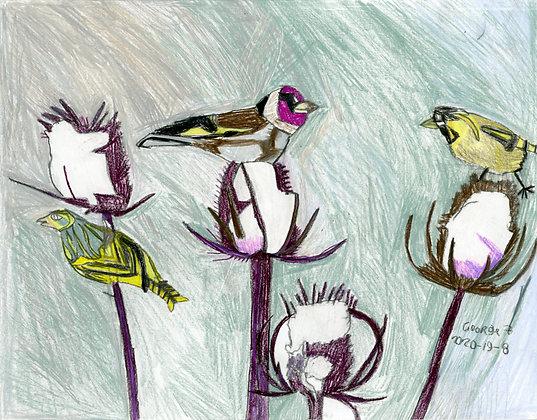 """""""Little Birds""""by George Zuniga"""