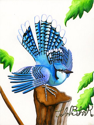 """Blue Jay"" by John Behnke"
