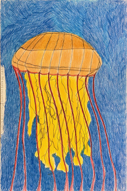 """""""Jellyfish"""" by Franklin Armstrong"""