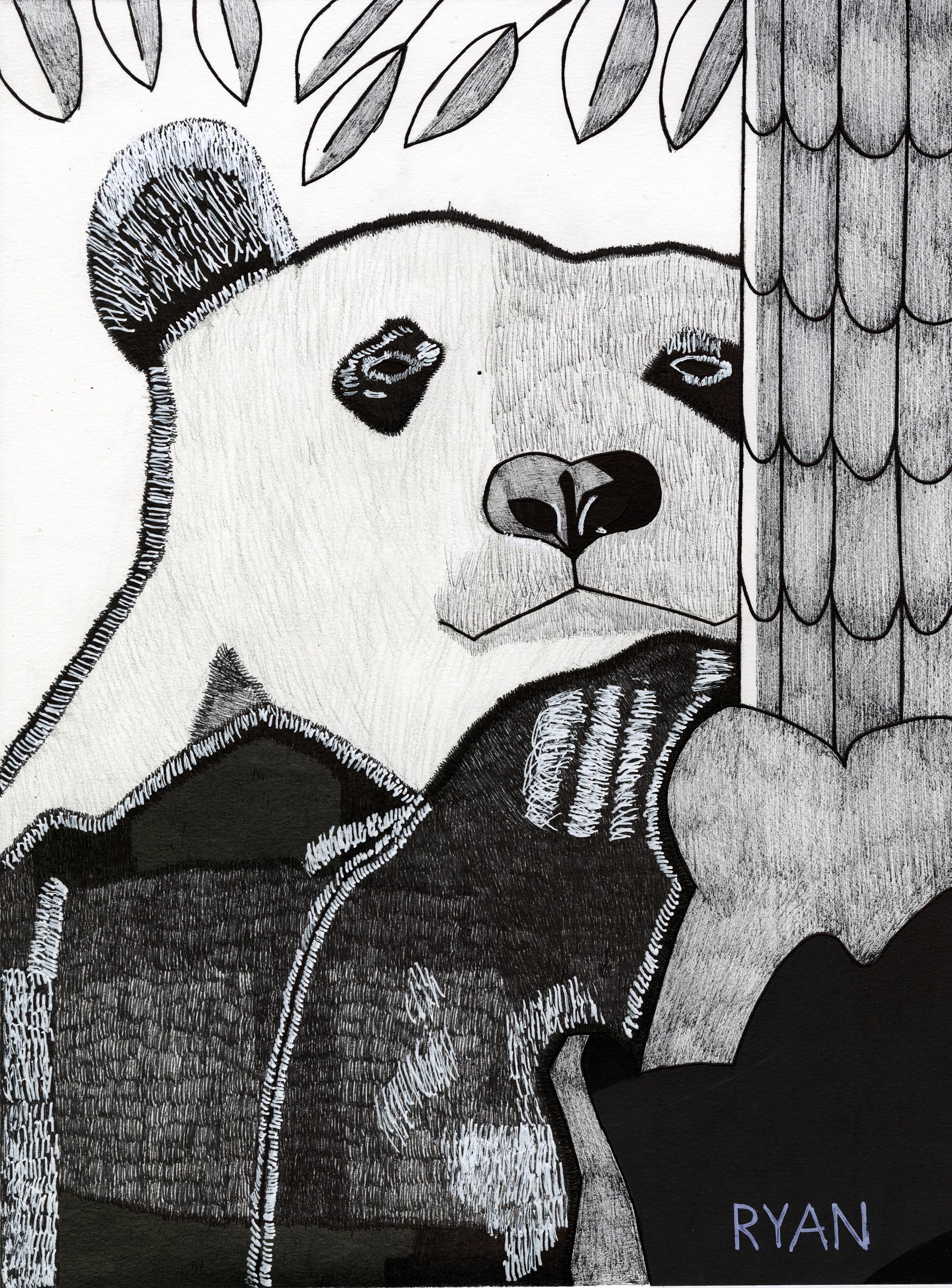 Ryan Panda_
