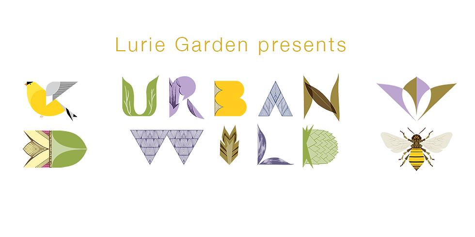 Lurie Gardens: Urban Wild