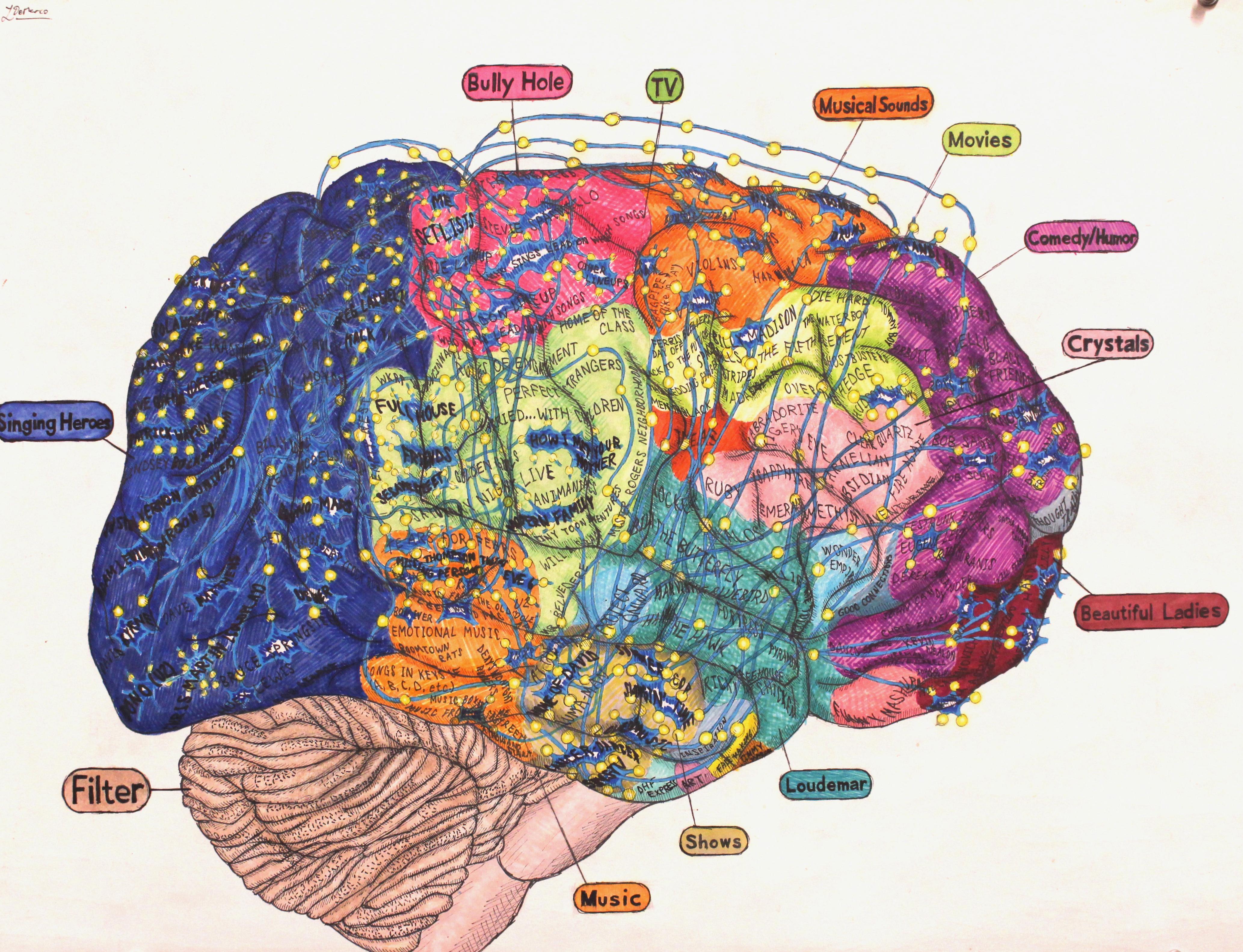 Louis_s Brain