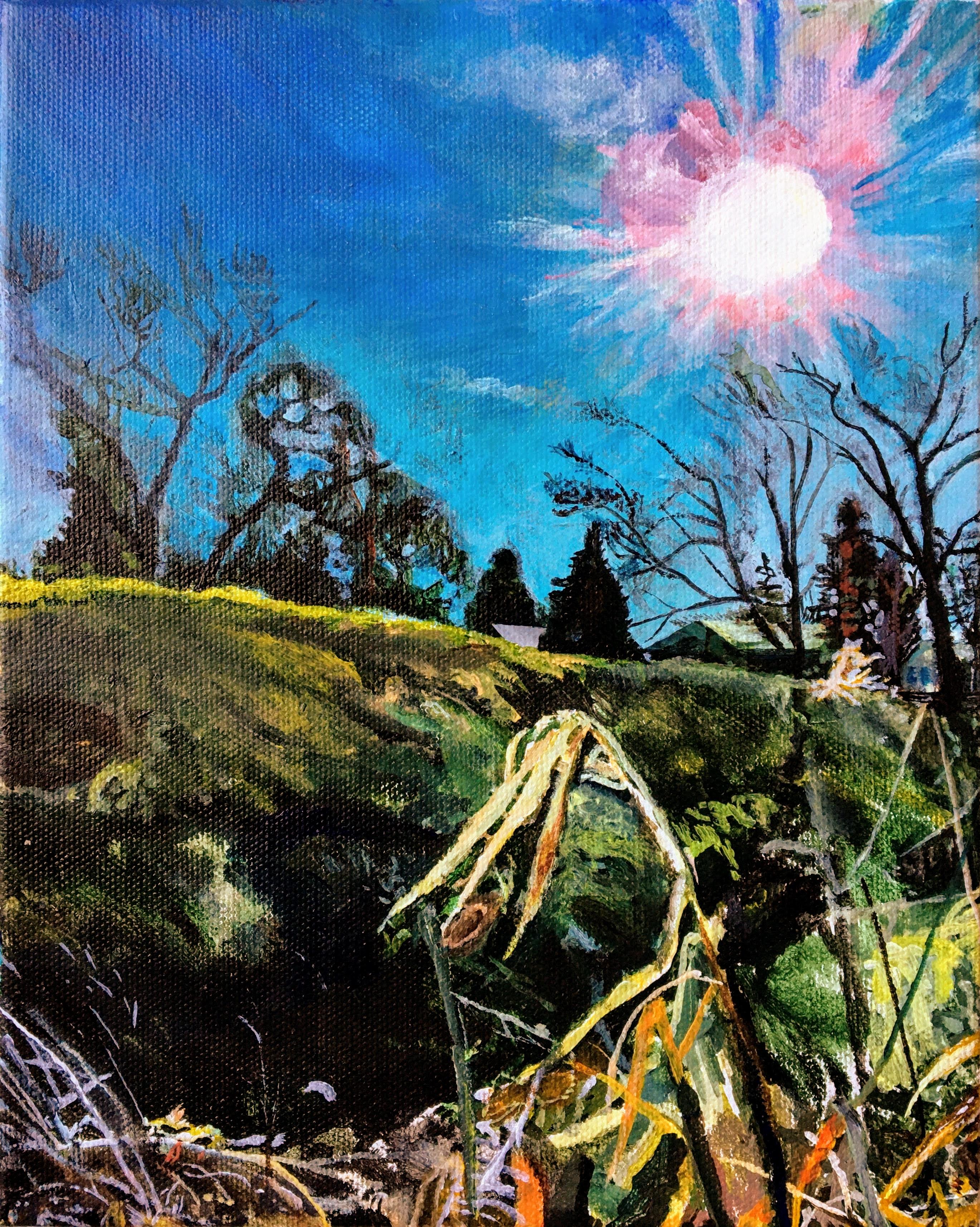 """""""Sunny Field"""" by Luke Shemroske"""