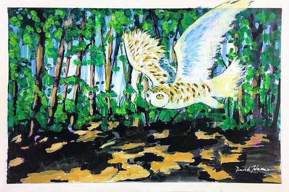 """""""Owl in Flight"""" by David Hence"""