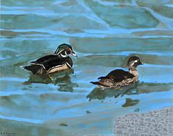 """""""Ducks"""" by R.J. Juguilon"""