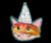 celebration-cat-background_edited_edited
