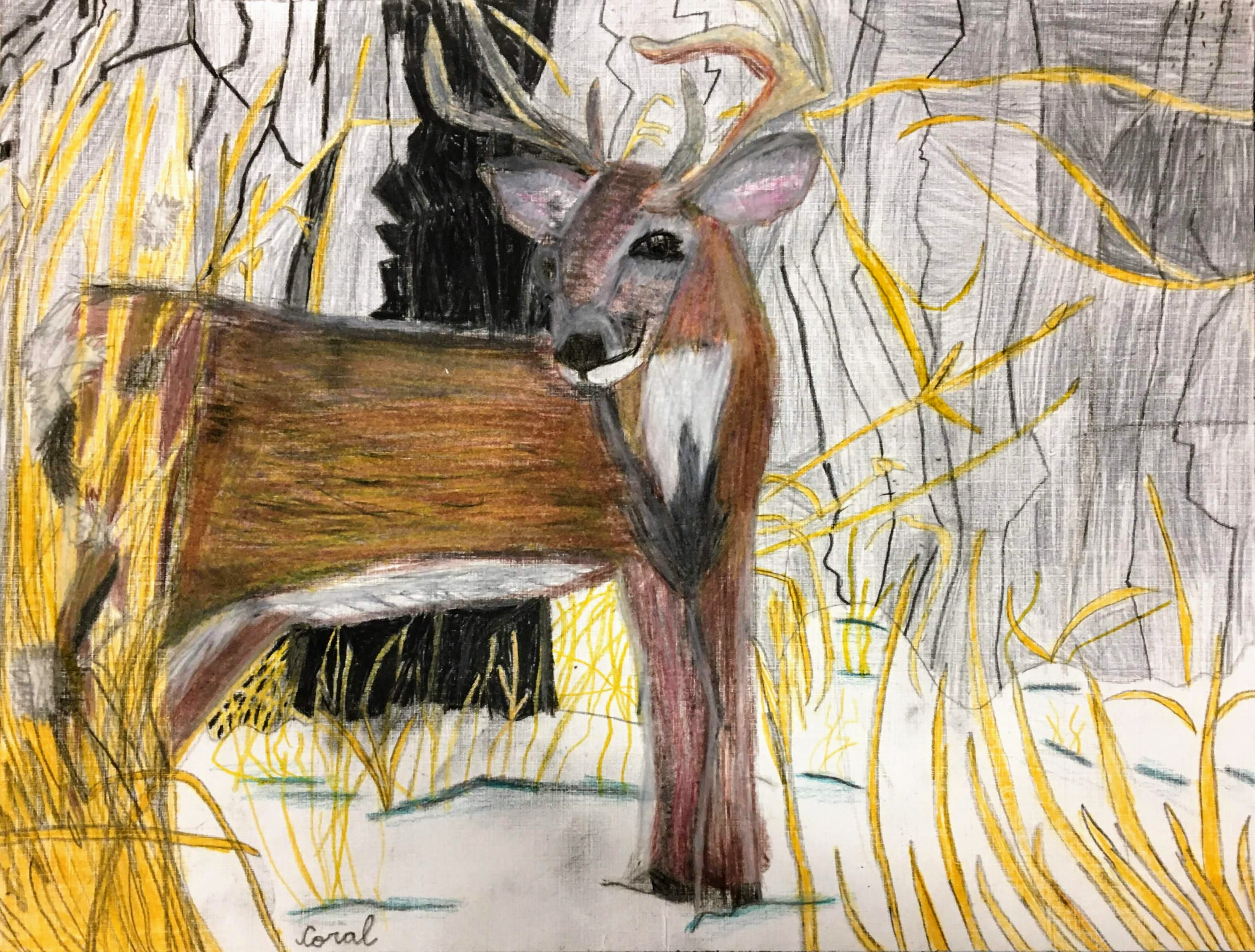 """Deer in the Snow"" by Coral Kappel"