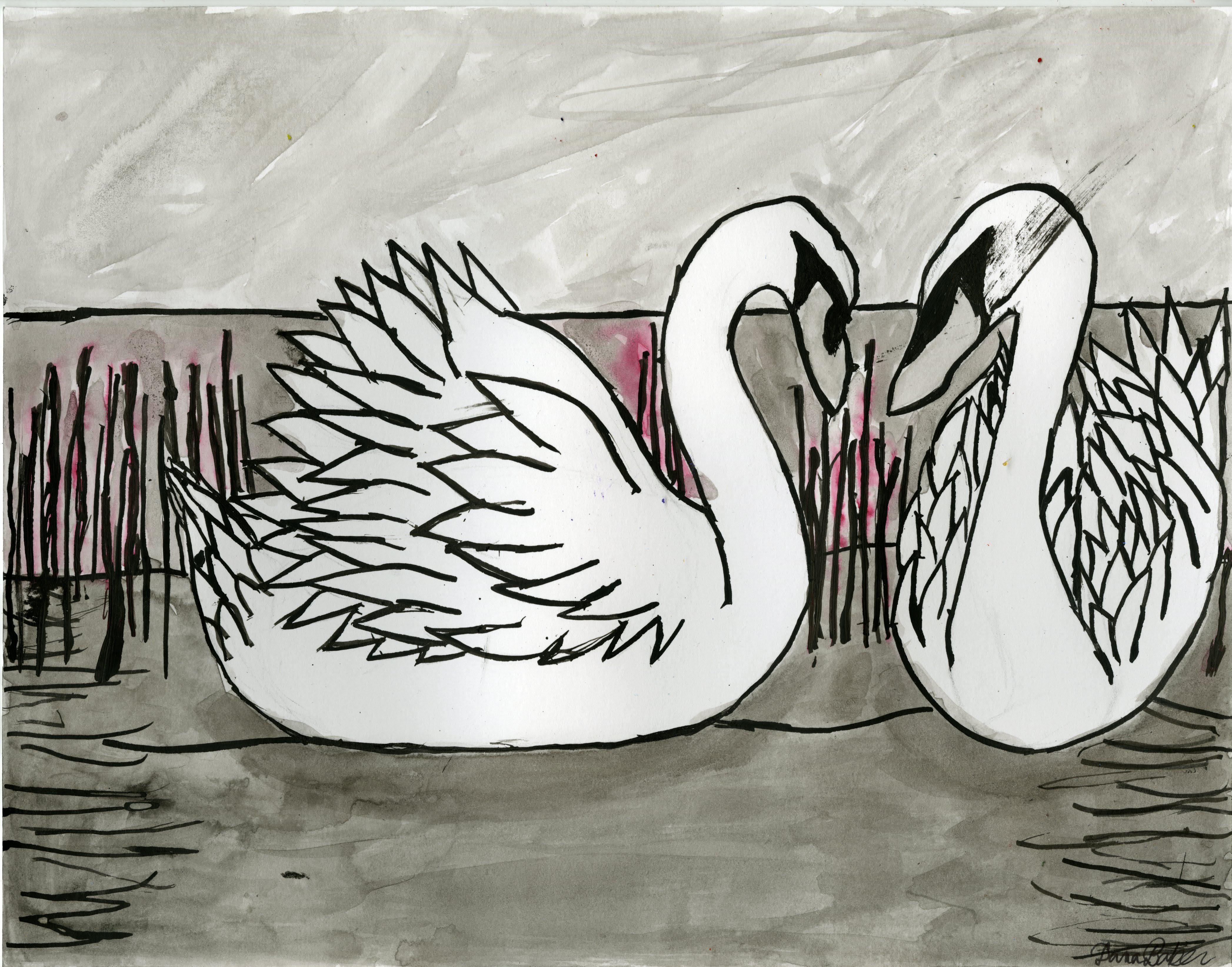 Dana Baker Swans 283 (1)