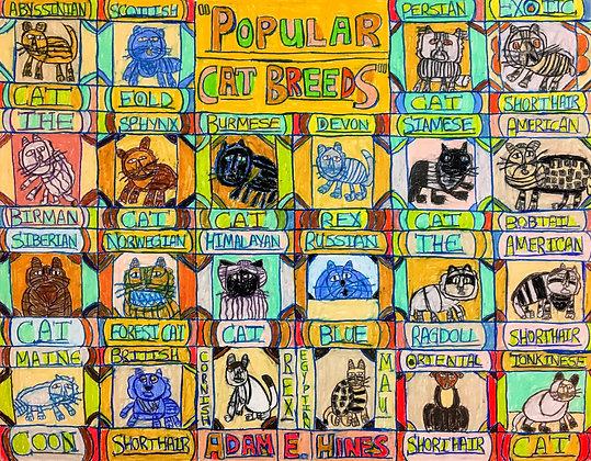 """Popular Cat Breeds"" by Adam Hines"