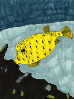 """""""Puffer Fish"""" by Jack Moore"""