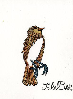"""""""Bird"""" by John Behnke"""