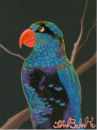 """""""Parrot 3"""" by John Behnke"""