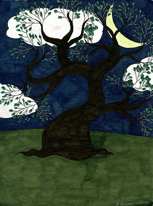 """Tree at Night"" by Jacqueline Cousins Oliva"