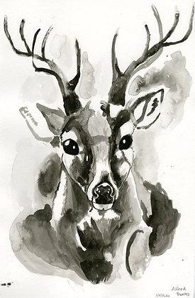 """""""Deer"""" by Alfred Banks"""