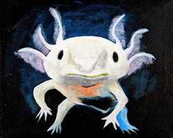 """""""White Axolotl"""" by Alfred Banks"""
