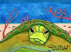 """Sea Turtle"" by John Behnke"