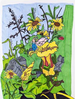 """""""Fairy Garden"""" by Matthew Bianchi"""