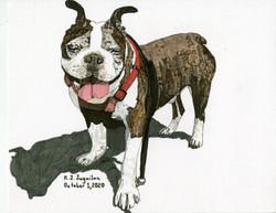 """French Bulldog"" by RJ Juguilon"