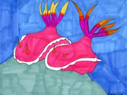 """""""Sea Slugs"""" by Jacqueline Cousins Oliva"""