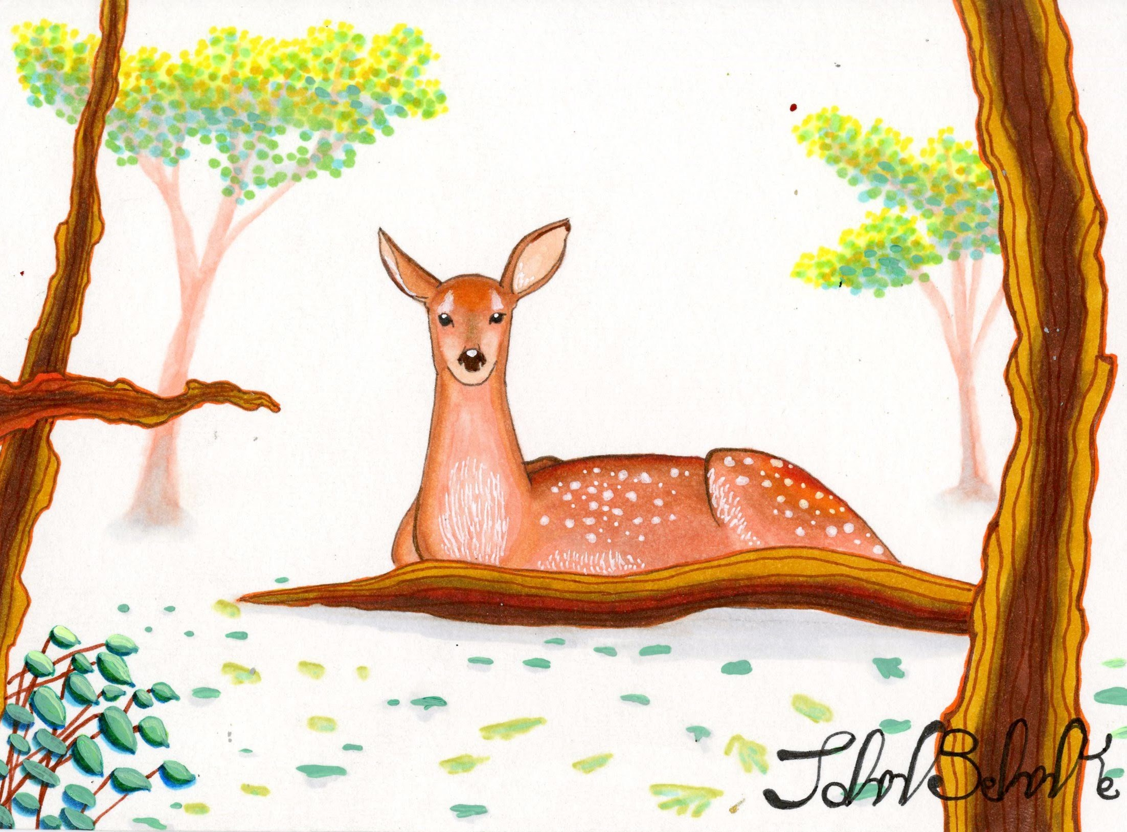 """Deer"" by John Behnke"