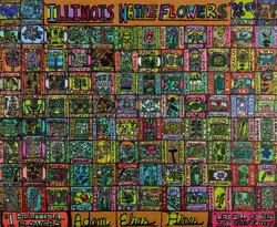 """Illinois Native Wildflowers"" by Adam Hines"