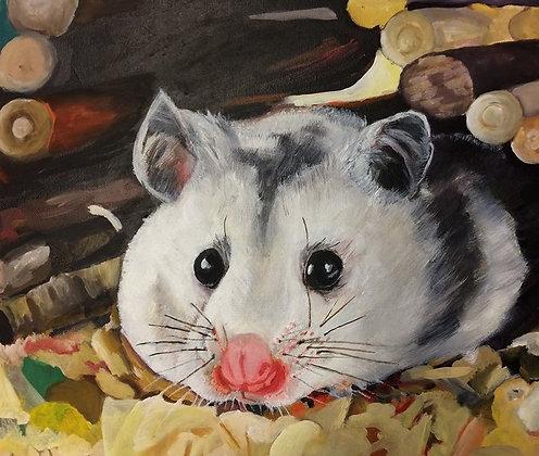 """Russian Dwarf Hamster"" by Alfred Banks Jr."