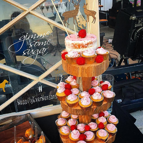 Melissa's Engagement Cupcakes