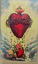 Sacred Heart bleeding onto Immaculate He