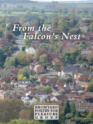 From the Falcon's Nest
