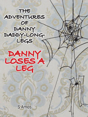 The Adventures of Danny Daddy Long Legs